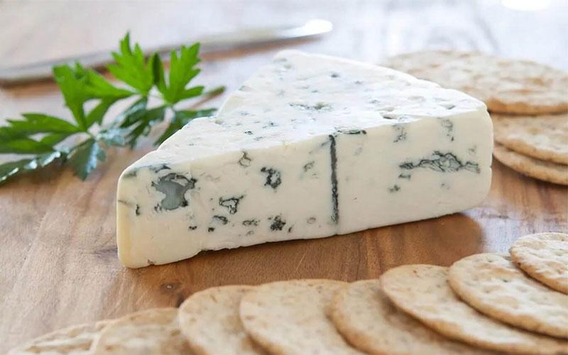 پنیر کپکی