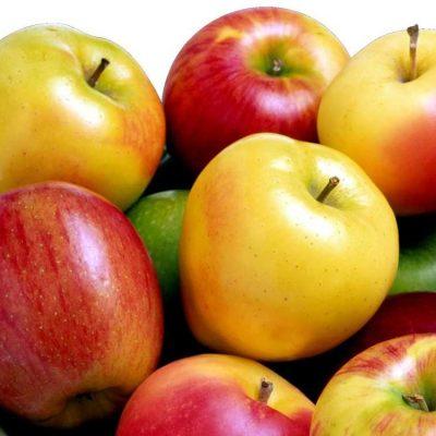 سیب پس زمینه