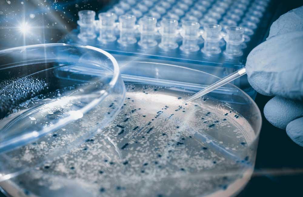 محققان اروپایی راه هایی برای یافتن سریع داده ها از مواد غذایی پیدا کردند