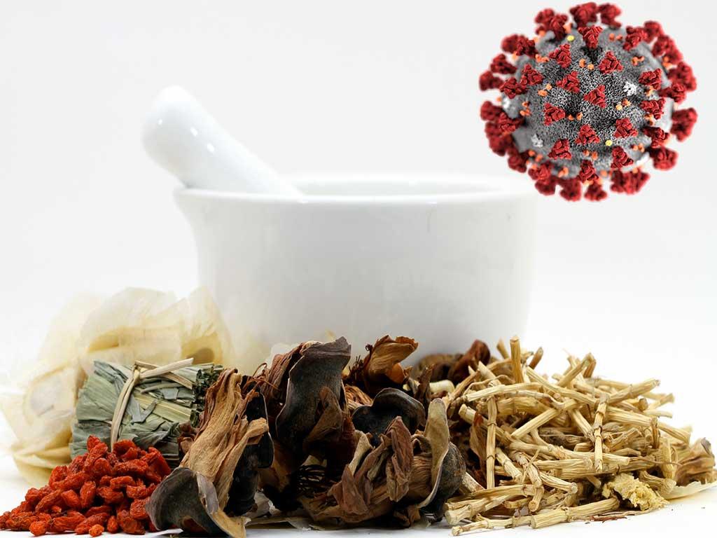 کرونا و درمان آن به وسیله طب سنتی در چین